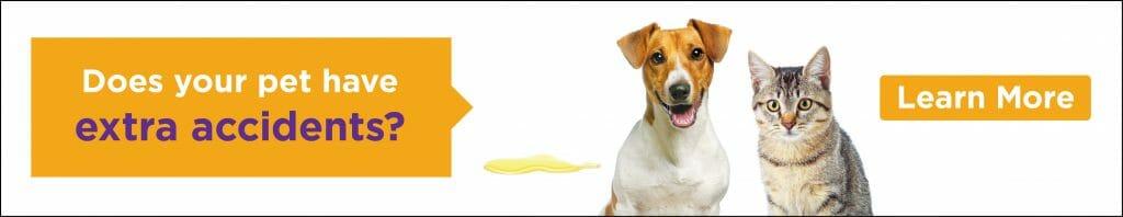 4Paws Veterinary 24-Hour Emergency Pet Hospital & Halifax
